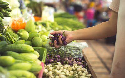 Pourquoi privilégier les aliments bio ?